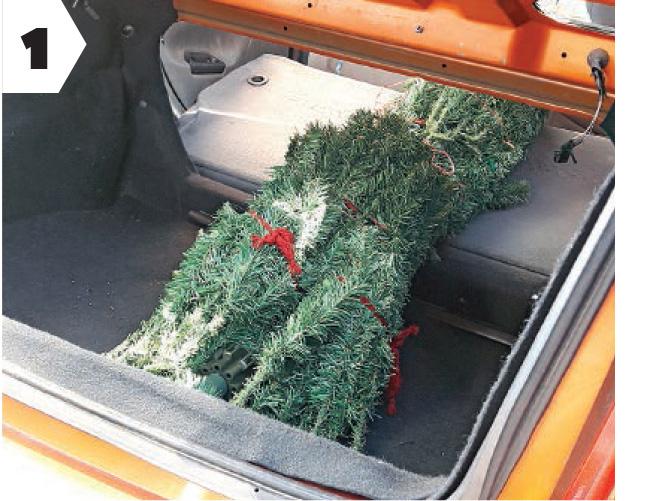 Multa por llevar el arbol de navidad en el techo - Arbolito de navidad ...
