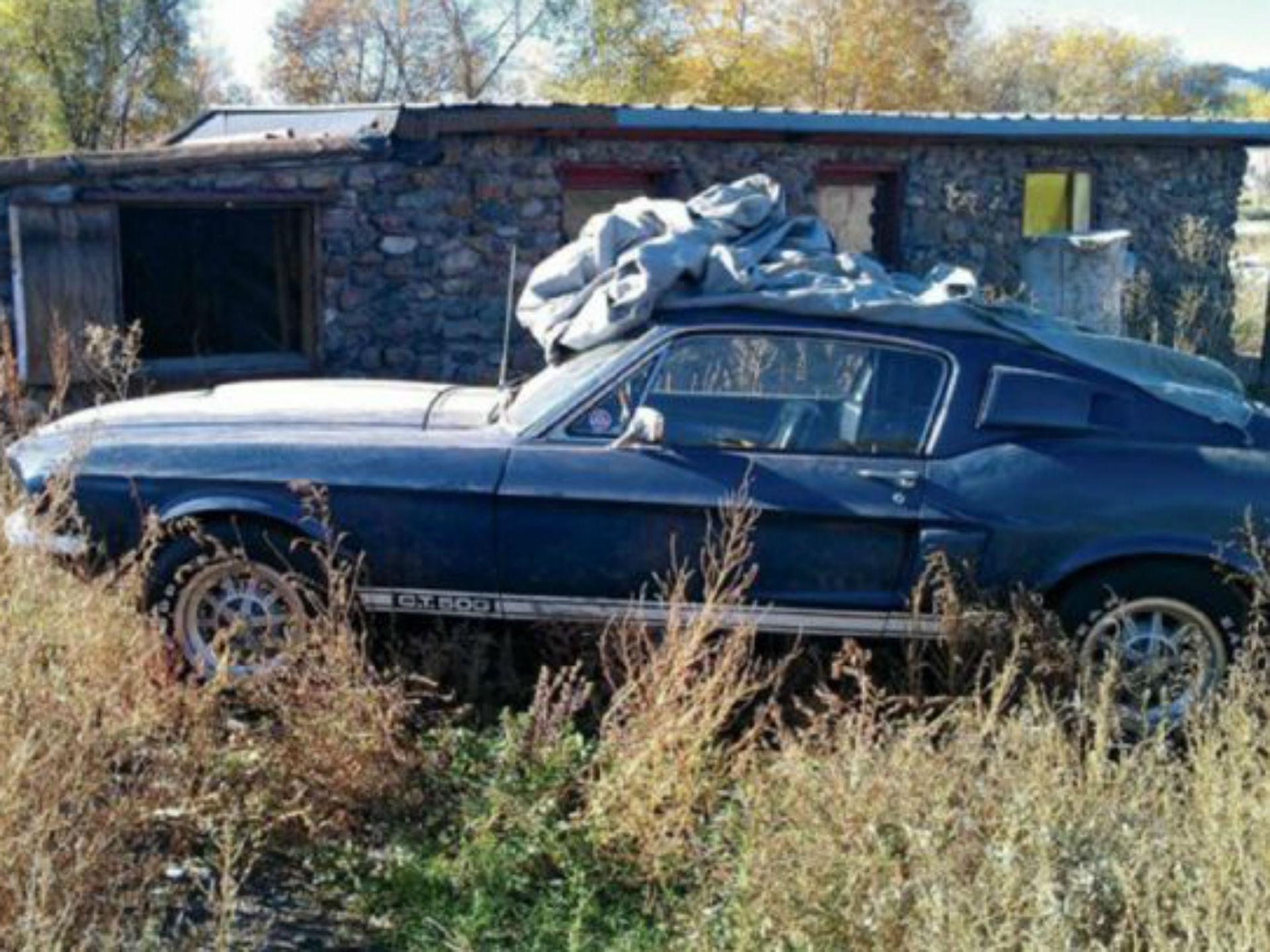 Mustang Shelby GT500 1967. Conocemos la leyenda. Pocos autos eran intervenidos por el equipo de Carroll Shelby y el GT500 se transformó en 001 de los más famosos. Su 428 de 355 caballos era famoso por su gran desempeño. Una familia caminaba por el ámbito cuando se toparon con un auto cubierto, sólo se podían ver las frajas blancas, al quitarle la cubierta, se descubrió la sorpresa: un genuino Shelby con el motor casi intacto. Actualmente es 001 de los Mustang más caros. Foto: Especial