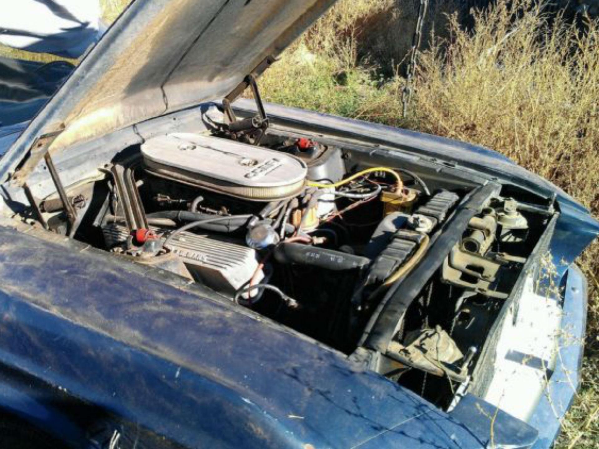 Mustang Shelby GT500 1969. Misteriosamente, 001 de los autos más codiciados, asimismo fue descuidado en condiciones parecidas al mentado anteriormente. En éste caso, se trata de una versión de 1969. Fue encontrada por un par de jóvenes en Pennsylvania. Pese a la gran cantidad de polvo, lo restauraron hasta dejarlo casi cual nuevo. Foto: Especial