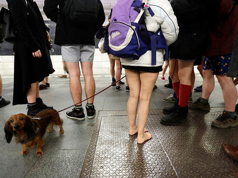 Pasajeros y perrito en el subterráneo de Praga. Foto: Reuters