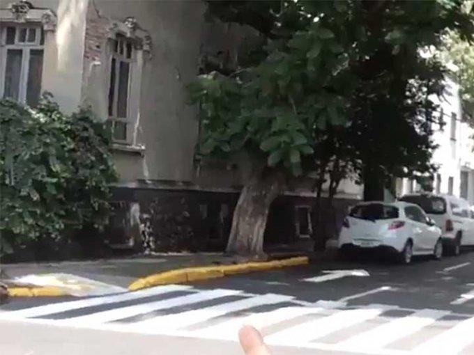 ¡Cuidado! La guarnición de la acera color amarillo denota el área donde está prohibido el estacionamiento.